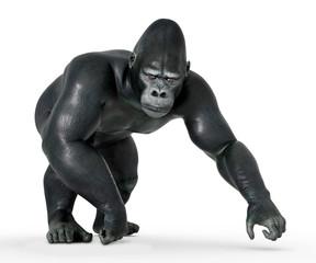 Gehender Gorilla