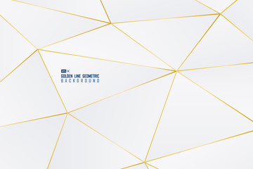 Abstract golden line decorative of geometric shape with gradient white background. illustration vector eps10
