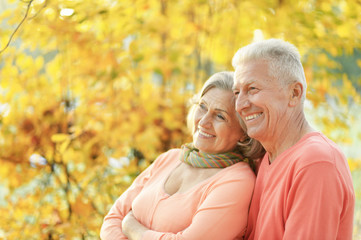 Portrait of senior couple hugging in the park