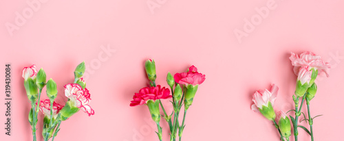 bouquet of different pink carnation flowers on pink background Top view Flat lay Holiday card 8 March, Happy Valentine's day, Mother's day concept Banner