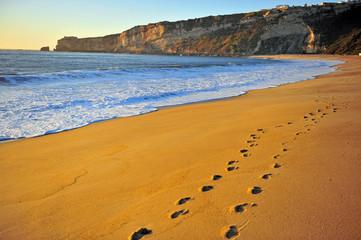 Scenic view of Nazare sand beach in Portugal