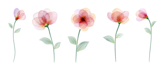 Set watercolor hand painted with colourful flower
