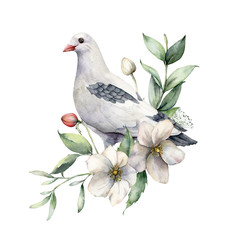Watercolor spring illustration with a bouquet of anemones and dove. Hand-painted birds and flowers isolated on white background. Wildlife scene for design, print, fabric. Easter card template.