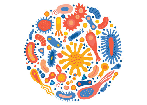 Bacterial set in a circle with different types of microorganisms.Abstract collection of shapes microscopic viruses, bacterias, microbes, protists. Colored flat vector illustration