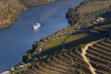 UNESCO World Heritage, a Cruise in Douro River, Vineyards Valley in Vila Nova de Foz Coa, Portugal.