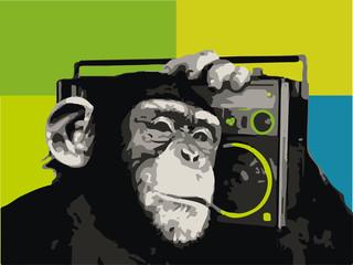 Chimpance musical con radio, mono y música.