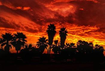 Deurstickers Rood paars fire in the sky