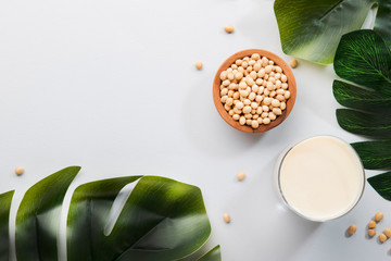 Soy milk and soy bean on gray table kitchen background. Non-dairy milk concept. Vegan drink. Hard light. Copy space