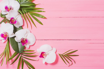 Stores à enrouleur Orchidée orchid flowers and exotic leaves on pink wooden background