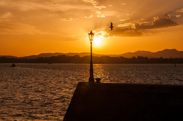 Santander Regina's harbour during the sunrise