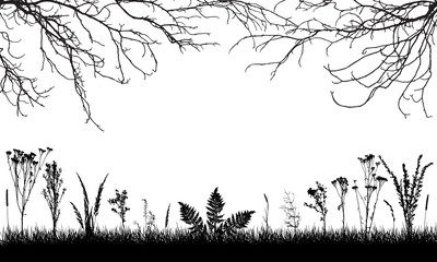 Silhouette of grassland, wild weeds and grass, bare branches trees. Vector illustration. Applied clipping mask