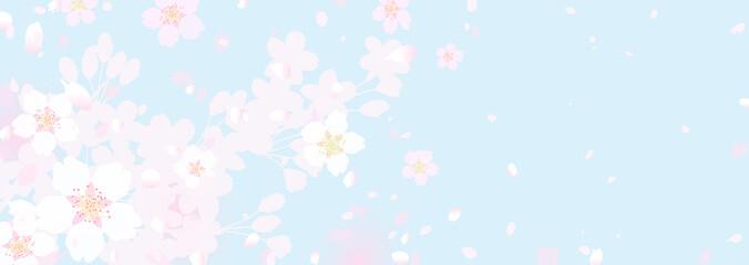 Wall Murals Light blue ふわふわ幻想的な桜と春の空