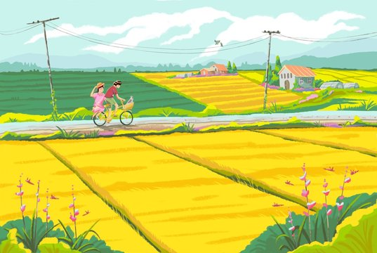 children cycling with landscape of rice fields
