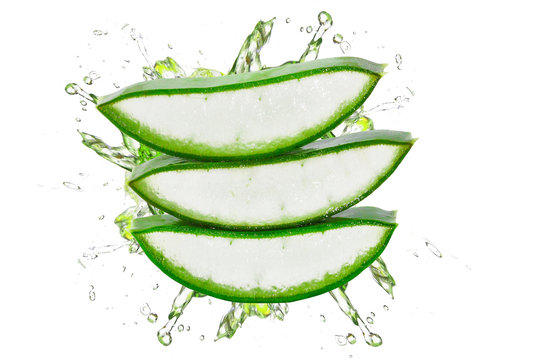 Fresh aloe vera slice isolated on white background.aloe vera stack with water splashing concept.nature gives freshness