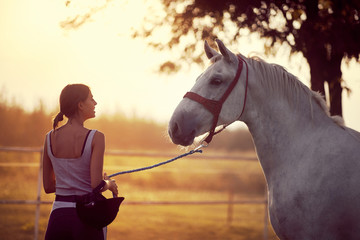 Woman leading her horse after a ride. Training on countryside, sunset golden hour. Freedom nature...