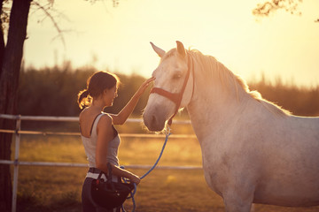 Horse getting pets by girl rider.  Fun on countryside, sunset golden hour. Freedom nature concept. Wall mural