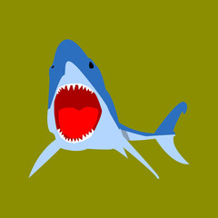 picture of shark on green background