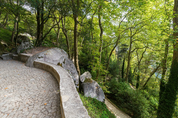 Footpath to medieval hilltop castle Castelo dos Mouros (The Castle of the Moors) in a lush and verdant hilly forest in Sintra, Portugal, on a sunny day.