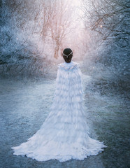 young adult Snow Queen walks ball. Artistic snowy photo shoot. Winter landscape. scene ice cold trees covered frozen branches frost. Lady turned away, back train. Creative royal clothes birds feathers