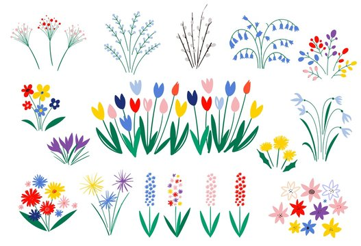 Set of spring flowers in a flat style isolated on white background. Elegant floral decorations. Illustration of nature flower spring and summer in garden. 8 March. Vector illustration.