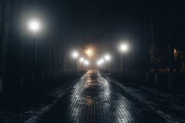 Autumn city park at night in fog Fotomurales