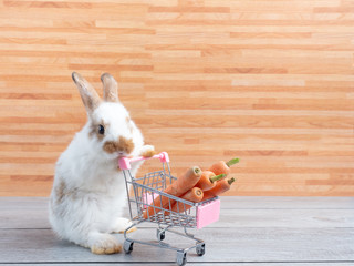 White cute baby rabbit standing and hold the shopping cart with baby carrots.  Lovely action of young rabbit as shopping on wooden background. Fotobehang