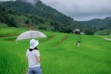 Travel and take pictures at the top of the mountains in northern Thailand