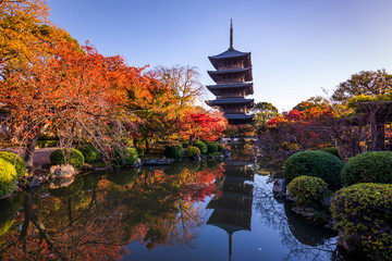 The wooden tower of To-ji Temple in Kyoto at autumn