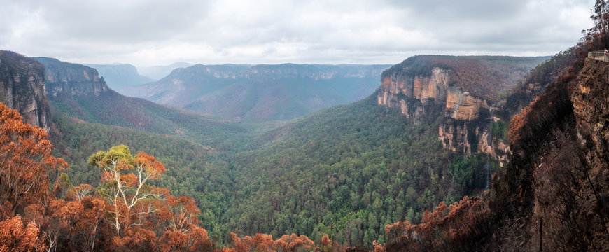 Devastating bushfires were engulfing the Grose Valley at Blackheath in Blue Mountains National Park, climbing the 200m high cliff faces in the worst bushfires in Australian history in December 2019.
