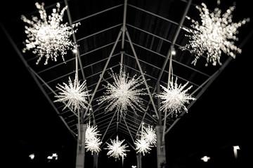Snowflakes at Night