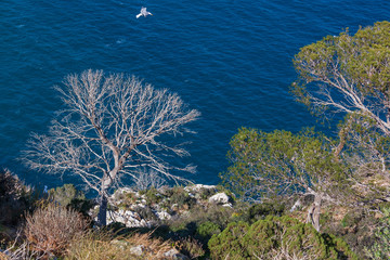 View of the Mediterranean sea from steep rocks of the peak Penon de Ifach, Spain