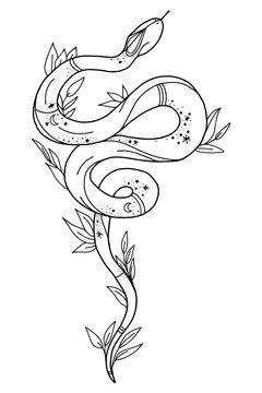 Vintage line snake. Vector illustration.  Collection of Mystical and Mysterious objects. Line art illustration isolated on white background.