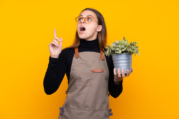 Young gardener girl holding a plant over isolated yellow background pointing with the index finger a great idea
