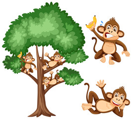 Big tree and naughty monkeys on white background