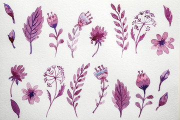 Floral watercolor pattern on white background, top view