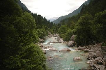 Emerald green river Soca in Slovenia, alpine mountain river