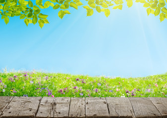 Wall Mural - spring meadow with flowers and old grunge wooden floor