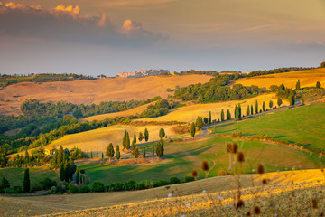 Fototapete - Beautiful Tuscany landscape, Italy, Europe
