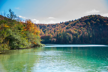 Autumn landscape in Plitvice Lakes Park, Croatia