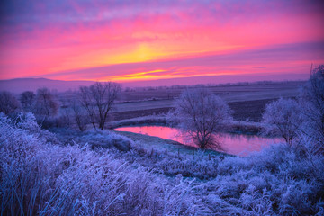 Deurstickers Candy roze Sunrise in the winter