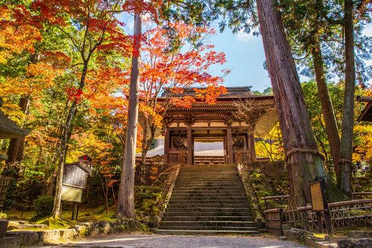 日本の秋 滋賀 湖東三山 西明寺⑰  Autumn in Japan, Shiga Prefecture, Koto-sanzan Saimyoji Temple #17