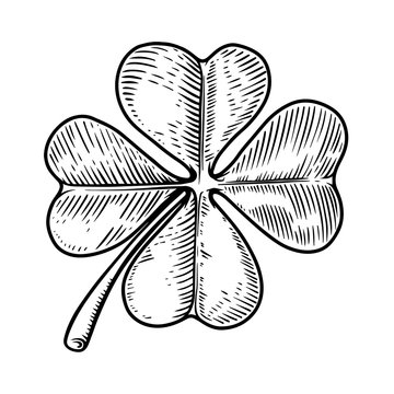 Illustration of leaf of clover in engraving style. Design element for poster, card, banner, flyer. Vector illustration
