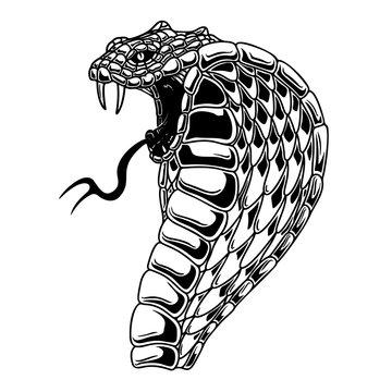 Illustration of cobra snake. Design element for poster, card, banner, flyer. Vector illustration