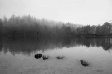 Beautiful mody Autumn Fall landscape of woodland and lake with mist fog during early morning