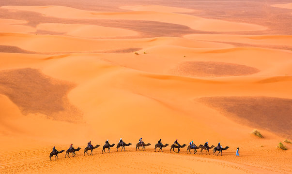 Camel caravan with travelers among the sand dunes in beautiful Sahara Desert. Amazing view nature of Africa. Travel concept. Artistic picture. Beauty world.