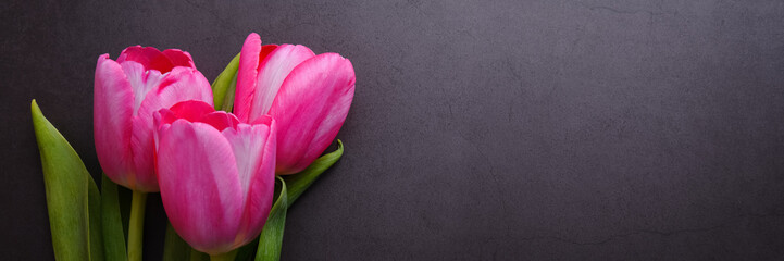 Fotorolgordijn Tulp A bouquet of beautiful bright pink tulip close-up against a dark gray stucco wall.