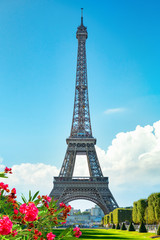Fototapete - Spring in Paris