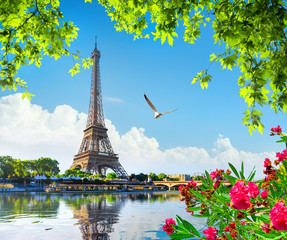 Photo sur Toile Tour Eiffel Eiffel tower and flowers