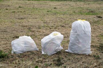 Tre sacchi di immondizia in un campo all'aperto