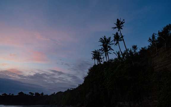 Tropical palm tree on unusual exotic beach with black volcanic sand, during sunset, pink sky with clouds, Belong Beach, Bali, Indonesia.